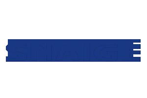 snaige-logo